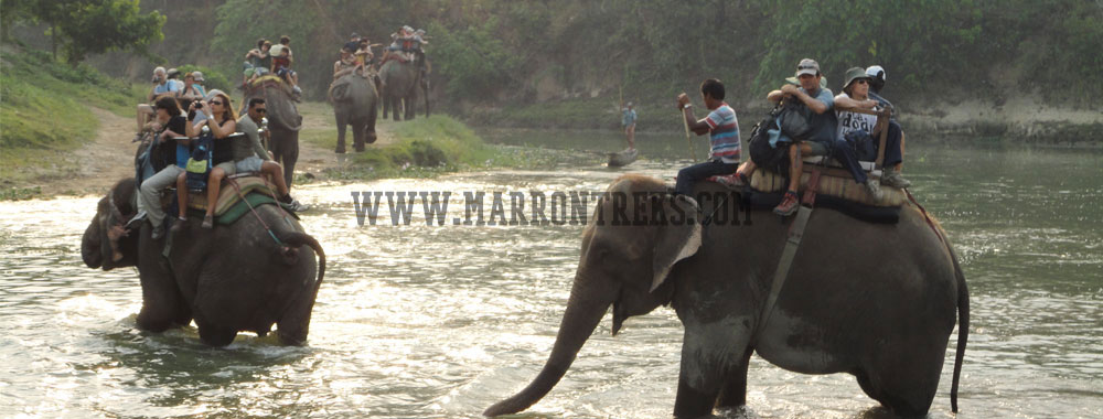 Enjoying the Elephant Safari in Chitwan National Park of Nepal.