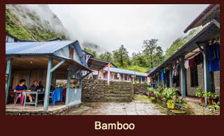 Bamboo, a small village in the Annapurna region of Nepal.