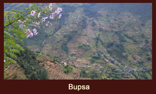 Bupsa, also known as 'Bumburi', is a village in the Everest region of Nepal.