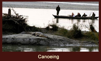 Canoeing along the Rapti or Narayani Rivers in Chitwan National Park Nepal, is great for birdwatchers.