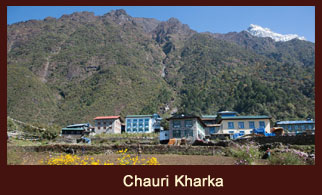 Chauri Kharka, a temporary yak shed in the Everest region of Nepal.