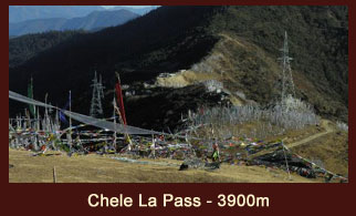 Chele La Pass (3900m) is considered to be one of the highest motorable passes in Bhutan.