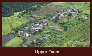 Upper Tsum, a scenic valley in the Annapurna region of Nepal, characterized by stone houses and vast stretches of crop fields.