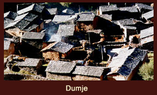 Dumje, a small village in the Annapurna region of Nepal famous for its Tibetan herbal medicine clinic.
