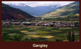 The valley of Gangtey is one of the most beautiful spots in Bhutan.
