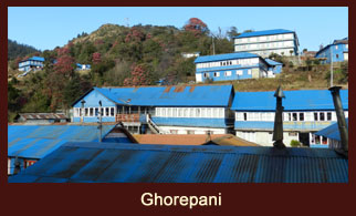 Ghorepani, a popular village in the Annapurna region, dotted with well facilitated tea houses.
