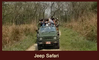 The Jeep Safari at the Koshi Tappu Wildlife Reserve in Nepal offers an enthralling experience.