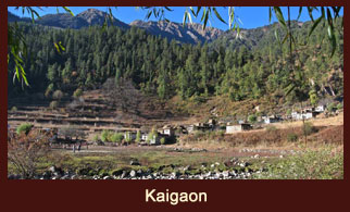 Kaigaon, a small village in the far western region of Nepal which actually happens to be the transit to the