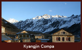 Kyangjin Gompa, the last human settlement in the Langtang region of Nepal offering some enticing excursions to Tsergo Ri and Yala Cheese Factory.