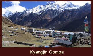 Kyangjin Gompa, the last human settlement in the Langtang region of Nepal offering some enticing excursions to Tsergo Ri and Yala Cheese Factor