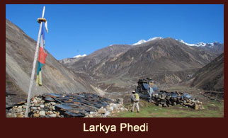 Larkya Phedi, also known as Dharmasala is a small settlement in the Annapurna region of Nepal.