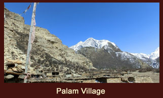 Palam is a small hamlet in the far western region of Nepal, regarded as the winter settlement for the people of Ringmo village.