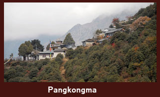 Pangkongma, a hamlet in the Everest region of Nepal.