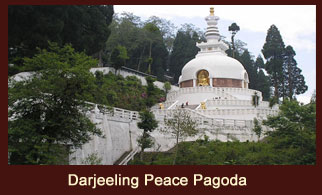 The Peace Pagoda in Darjeeling is a symbol of peace and unity.