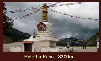 Pele La Pass (3300m) in Bhutan offers marvelous views of the snow clad peaks as well as Bhutan's sacred peak, Mt. Chomolhari 7326m.