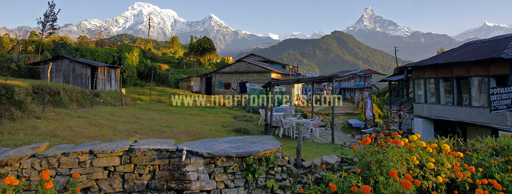 Pothana, bustling village in the Annapurna region of Nepal, dotted with plenty of teahouses.