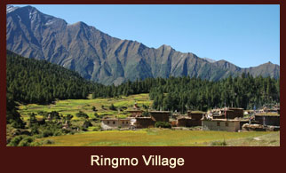Ringmo village is a charming, medieval looking settlement of flat-roofed stone houses, carved mani walls and ancient chortens in the far western region of Nepal.