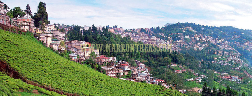 Sikkim and Darjeeling are the popular hill stations in India known for incredible natural beauty and lush tea gardens.