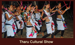 The unique 'Tharu Stick Dance', a part of Tharu Cultural show in Chitwan, Nepal.